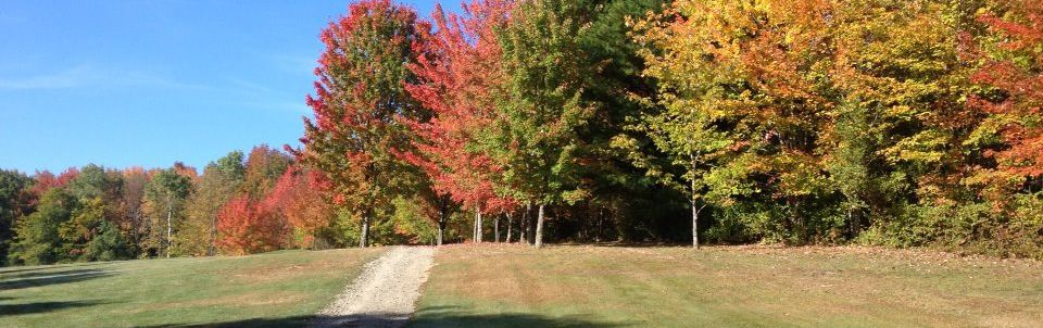 Overview of golf course named Apalachin Golf Course
