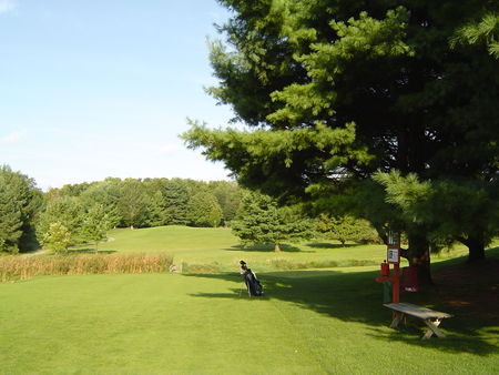 Overview of golf course named Trumansburg Golf Club