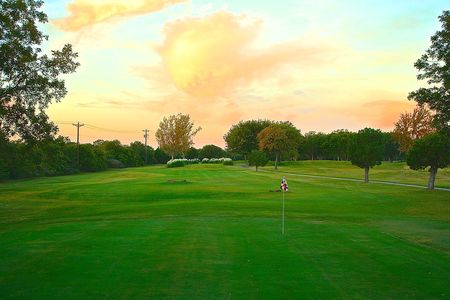 Shady oaks golf course cover picture