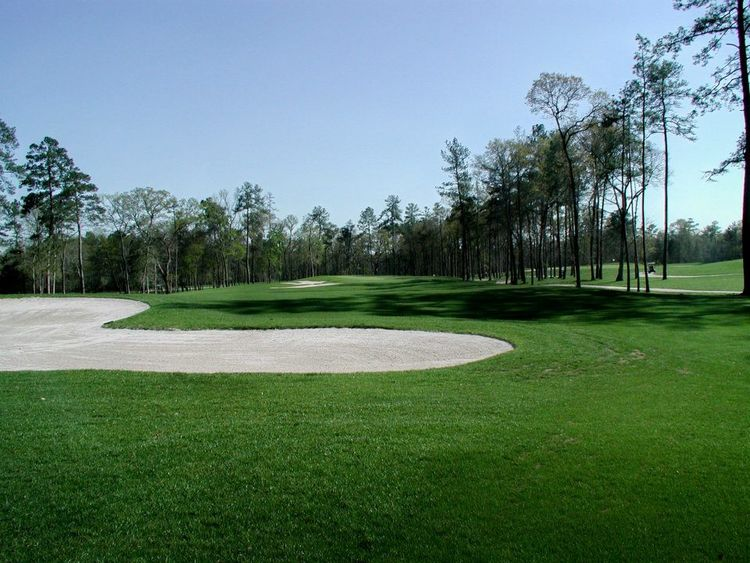 Augusta pines golf club cover picture