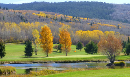 Targhee village golf course cover picture