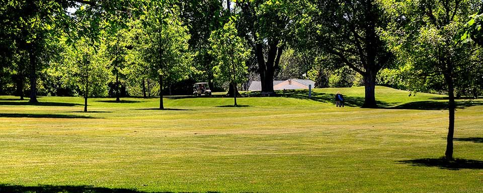 Shoaff park golf course cover picture