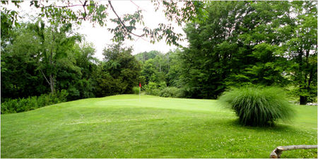 Tameka Woods Golf Course Cover