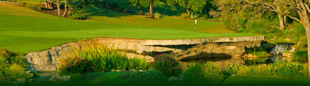 Falconhead golf club cover picture
