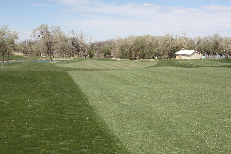 Comanche trail golf course cover picture