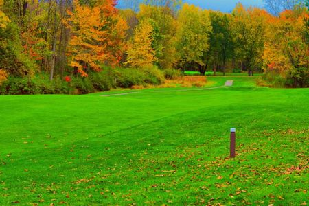 Wild Wood Country Club Cover Picture
