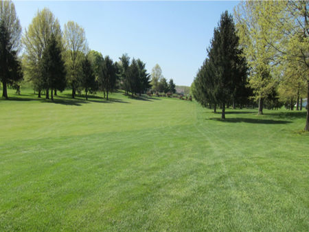 Pine hill golf course cover picture