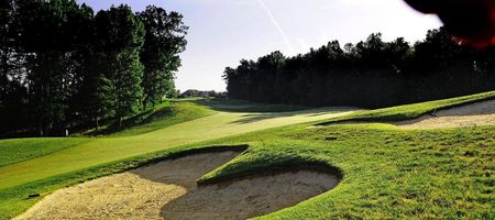 Forest greens golf club cover picture