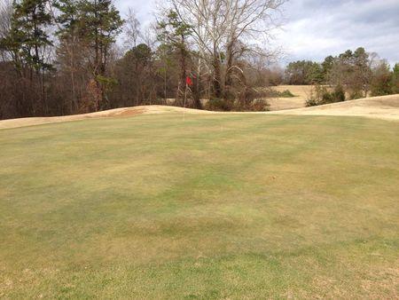 Green's Folly Golf Course Cover