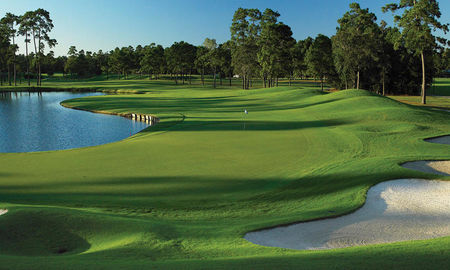 Woodlands Golf Course Cover Picture