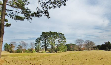 Overview of golf course named Links at City Park Golf Course, The