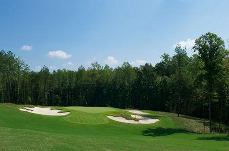 Magnolia green golf club cover picture
