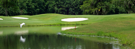 Championship course at crosswinds golf club cover picture