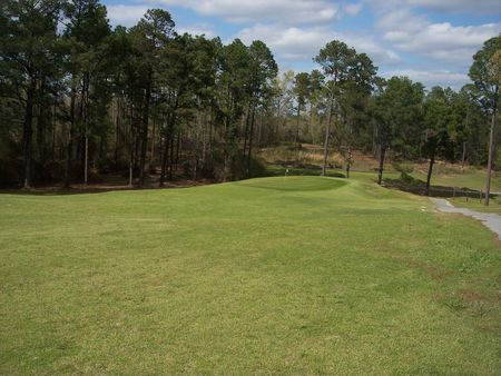 Pine needles country club cover picture