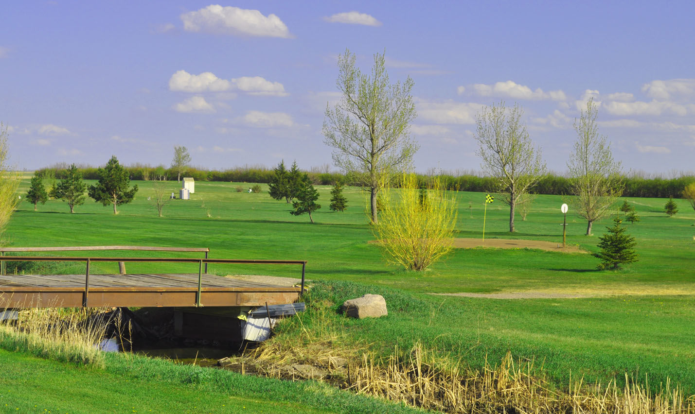 American legion golf club cover picture