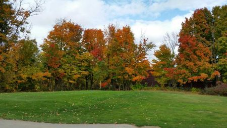 Clearview Country Club Cover Picture