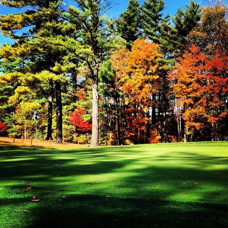 Winchendon School Golf Club Cover