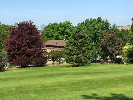 Cloverleaf Golf Club Cover Picture