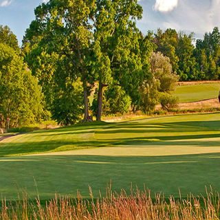Bellewood golf club cover picture