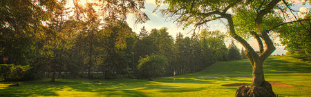 Meadia Heights Golf Club Cover Picture