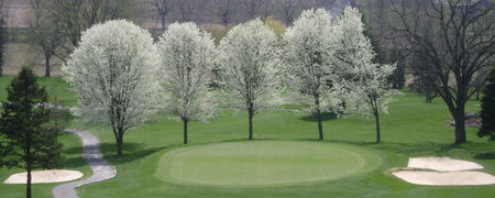 Willow Hollow Golf Course Cover Picture