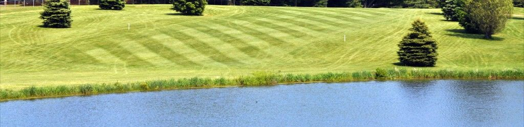 Country meadows golf course cover picture