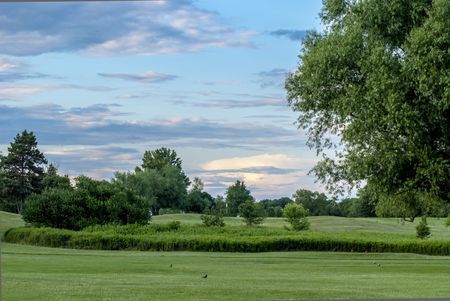 Limerick Golf Club Cover Picture