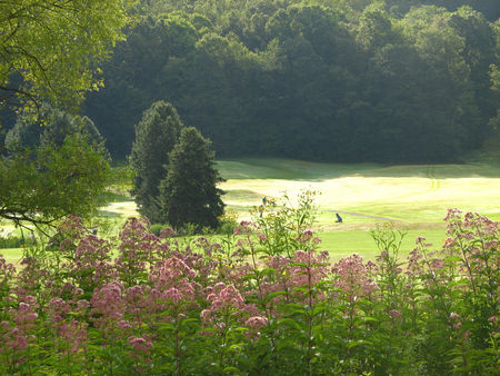 Valley Green Golf and Country Club Cover Picture