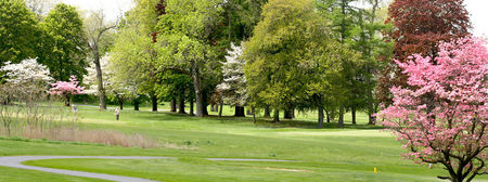 Willow brook golf course cover picture