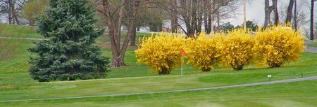 Susquehanna Valley Country Club Cover Picture