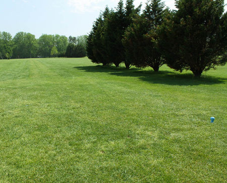 Stenger's Shamrock Farms Par-3 Golf Course Cover Picture