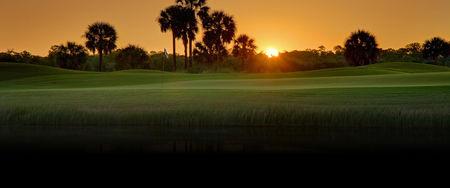 Profile cover of golfer named Mike Lendino