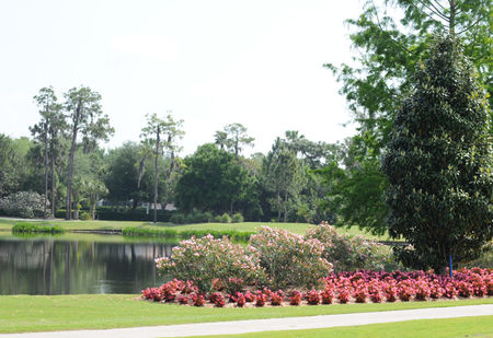 Tara Golf and Country Club Cover Picture