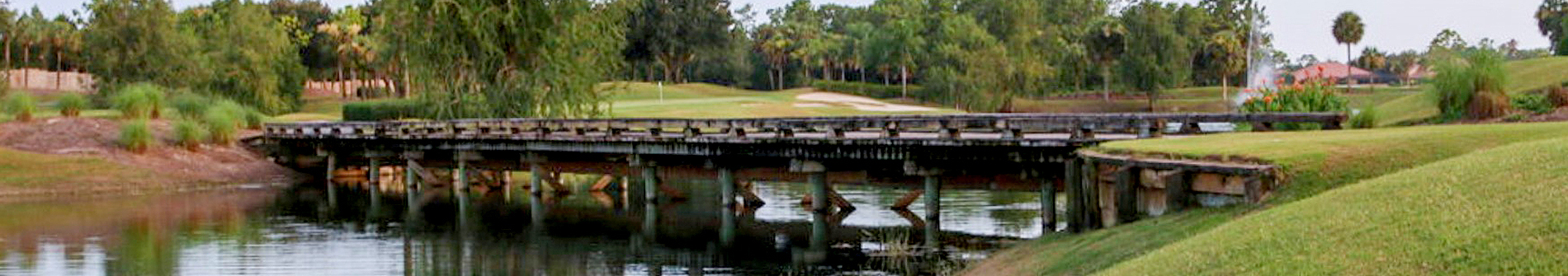 Overview of golf course named Preserve/Savannah at Strand, The