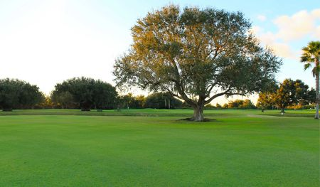 Live oak rv golf course cover picture