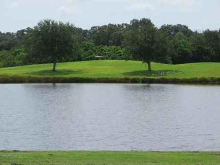 Links at Greenfield Plantation, The Cover Picture