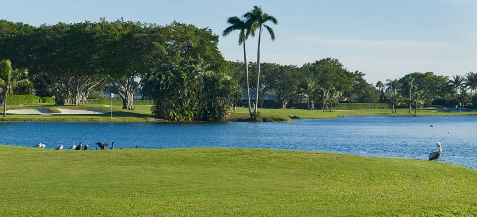 Atlantis golf club cover picture
