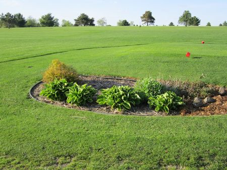 Maple Heights Golf and Country Club Cover Picture