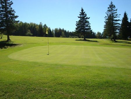 Evergreen Golf Club Cover