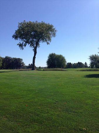 Falcon Ridge Golf Course Cover