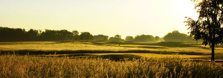 Tanners Brook Golf Club Cover Picture