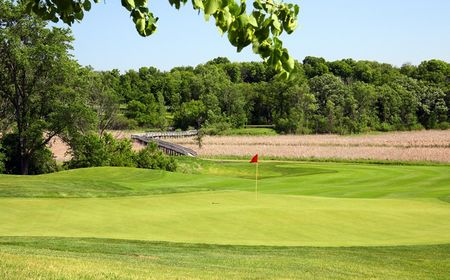 Wild marsh golf club cover picture