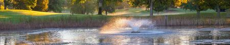 Dwan golf club cover picture