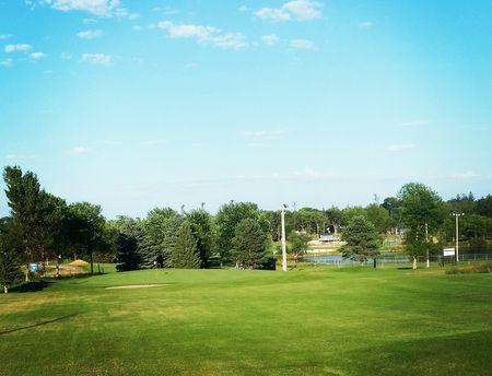 Island Pine Golf Club Cover