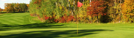 Lake miltona golf club cover picture