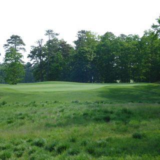 Ballamor golf club cover picture