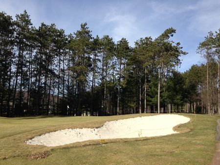 Bowling Green Golf Club Cover Picture