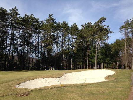 Bowling Green Golf Club Cover