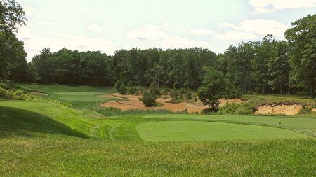 Pine Barrens Golf Club Cover