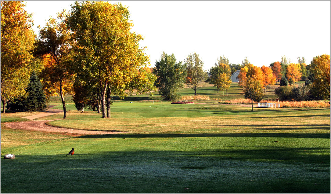 Central valley golf club cover picture